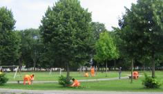 In Friuli quarantasette migranti diventano volontari: in tre comuni la formula dell'integrazione